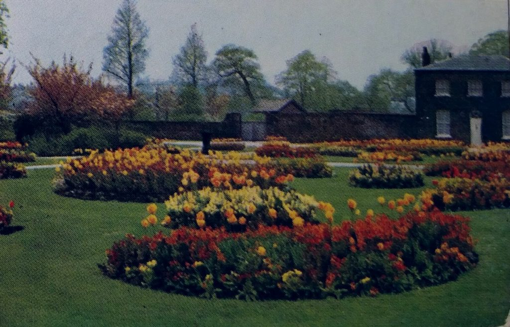 postcard_flowers